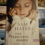 Sam Hayes: Das Verbotene Zimmer