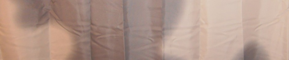 Duschvorhang: Im Schatten der Ente
