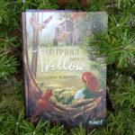 """Sabine Bohlmann: """"Ein Mädchen namens Willow"""""""