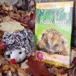 Hallo, Igel! Sach-Geschichten für Leseanfänger, 1. Lesestufe